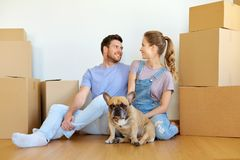 Happy couple with boxes and dog moving to new home royalty free stock photos