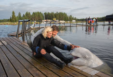 Happy couple is caressing of white whale Royalty Free Stock Photography