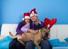 Happy couple celebrating christmas Stock Image