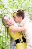 Happy couple in cherry tree flowers Stock Photos