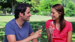 Happy couple clinking their flutes of champagne. In the countryside stock footage