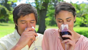 Happy couple clinking their glasses of red wine. In the countryside stock video
