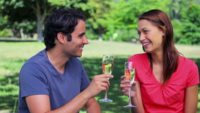 Happy couple clinking their glasses of white wine. In a parkland stock footage