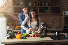 Happy couple cooking healthy food together. Happy couple cooking dinner together in their loft kitchen at home. Preparing vegetable salad Royalty Free Stock Images