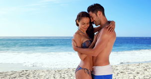 Happy couple cuddling. At the beach stock video