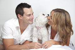 Happy couple with cute pet dog. Happy couple with young pet dog, puppy kissing woman Royalty Free Stock Photography