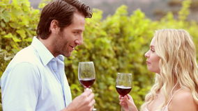 Happy couple discussing while having a wine glass. In the field stock footage