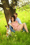 Happy couple with a dog royalty free stock images