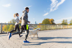 Happy couple with dog running outdoors Royalty Free Stock Image