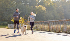 Happy couple with dog running outdoors Royalty Free Stock Photography