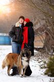 Happy couple with dogs in winter forest. Lovely moments outdoor royalty free stock photo
