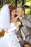 Happy couple drinking Stock Photography