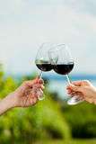 Happy couple drinking wine at lake in summer Stock Images