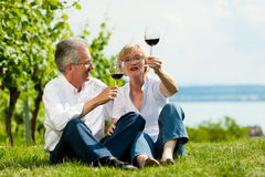 Happy couple drinking wine at lake in summer Royalty Free Stock Photo