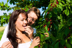 Happy couple eating cherries in summer Stock Photo