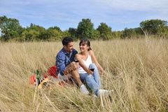 Happy couple enjoying countryside picnic Stock Photography
