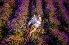 Happy couple in a field of lavender royalty free stock photography