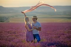 Happy couple in a field of lavender. A loving couple walks in the field of lavender, dreams and smiles. They are happy together and love each other royalty free stock photo