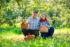 Happy couple in the garden harvests Stock Image