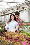 Happy couple in greenhouse with flowers Stock Photo