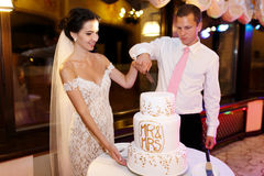 Happy couple groom and beautiful bride cutting delicious wedding Royalty Free Stock Photography