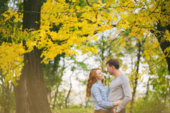 Happy couple hagging in autumn forest Stock Images