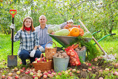 Happy couple with  harvested vegetables Stock Image