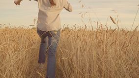 Happy couple having fun outdoors. Couple running away on the wheat field. Slowmo. Young couple having fun outdoors. Couple running away on the wheat field stock footage