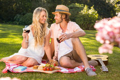 Happy couple having a picnic and drink red wine Royalty Free Stock Image