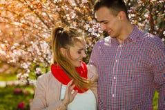 Happy couple having romantic date in park Stock Photos