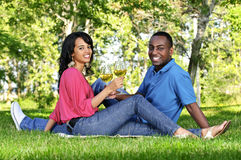 Happy couple having wine in park Stock Photography