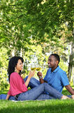 Happy couple having wine in park Royalty Free Stock Image
