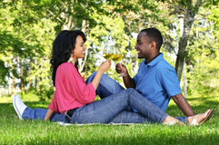 Happy couple having wine in park Stock Images