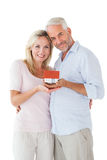 Happy couple holding miniature model house Stock Images