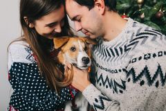 Happy couple hugging dog and embracing at christmas tree with li Stock Images