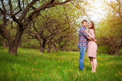 Happy couple are hugging on a spring meadow Stock Image