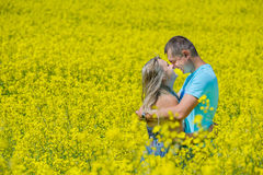 Happy couple kissing in nature at rape field. Young family kissing outdoors, in summer rape field, spending time together, romantic relationship, romance and Stock Photo