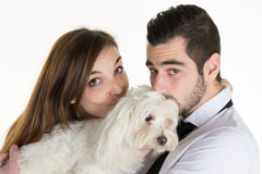 Happy couple kissing their white dog on couch at home Stock Photos