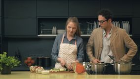 Young and happy couple in the kitchen. Happy couple in the kitchen. Young woman prepares dinner, her boyfriend appears and begins to taste, what she is cooking stock footage