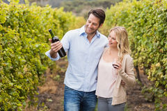 Happy couple looking at wine bottle Stock Images