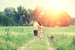 Couple and a dog walking along the rural road back to the camera royalty free stock images