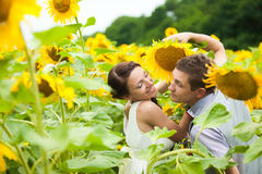 Happy couple in love having fun in field full of sunflowers Royalty Free Stock Photos