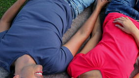 Happy couple lying on a blanket while holding their hands. In a parkland stock video