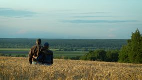 Happy couple, middle-aged man and woman talking and smiling while walking on wheat field at sunset summer evening. stock footage