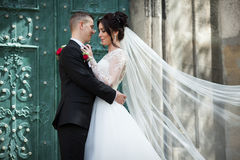 Happy couple of newlyweds hugging in front of old church door in Stock Photo