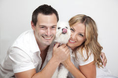 Happy couple with pet dog. Portrait of happy couple with cut pet dog, studio background Stock Photography