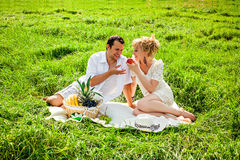 Happy couple at a picnic Royalty Free Stock Photo