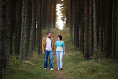 Happy couple in a pine forest Royalty Free Stock Images