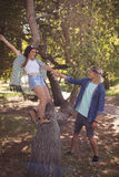 Happy couple playing on tree trunk Royalty Free Stock Image