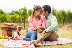 Happy couple relaxing on a blanket. In vineyard Stock Photography
